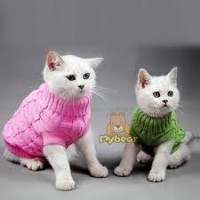 sweaters for cats cat sweater spagetti color warm autumn winter cat