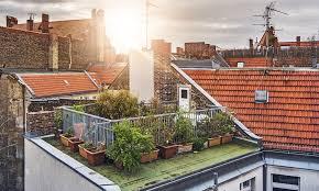 Rooftop Garden Ideas 5 Edible Urban Garden Ideas 1 Million Women