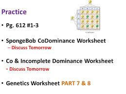 patterns and processes in inheritance ppt video online download