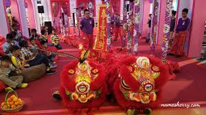 namesherry chinese new year with shelter home pj ecurve