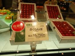 most expensive house in the world 2013 with price inside japan u0027s most insanely expensive fruit parlor
