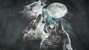 3 Wolf Moon Meme - 3 wolf moon art of modern living