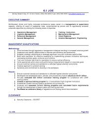 Resume Executive Summary Examples by Resume Summary Example Resume Sample