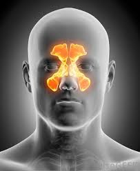 can sinus infection cause dizziness light headed what is the connection between sinus infection and dizziness