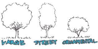 tree selection evstudio architect engineer denver