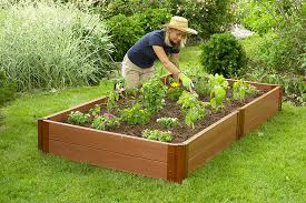 lummy raised no ly ive vegetable gardens raised bed gardening a