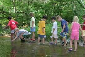 Cabin Creek Clothing Catalog Creek Walk U2013 Bowman U0027s Hill Wildflower Preserve