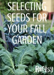 selecting seeds for your fall garden rootsy network