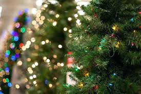 how many christmas lights per foot of tree how many lights per foot of christmas tree decorating tree this is