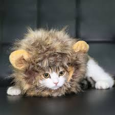 Pet Cat Halloween Costume Amazon Bassion Lion Mane Wig Dog Cat Lion Pet