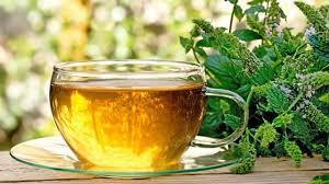 Teh Mint manfaat kecantikan dari teh peppermint lifestyle liputan6