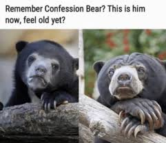 Patient Bear Meme - confession bear meme by dangerouspizza memedroid