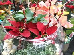 last minute holiday decorating centerpieces u0026 containers