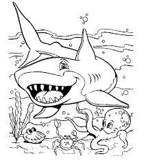 coloriage a imprimer requin et les autres animaux aquatiques