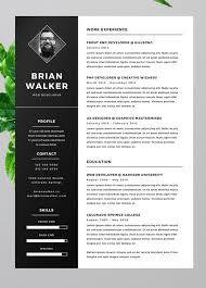 custom resume templates custom resume templates all best cv resume ideas
