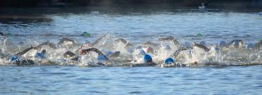 Rhode Island Wild Swimming images Tips to take your open water swimming to the next level jpg
