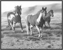 giclee prints western equine pets and landscape drawings