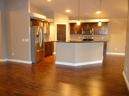 Birch Cabinets Waterloo Iowa by Verity Homes Verity Homes Kitchens Pinterest Living Room