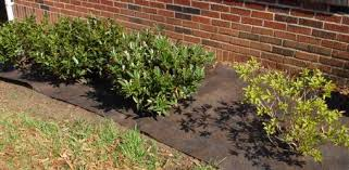 How To Remove Weeds From Patio How To Install Landscape Fabric And Plastic Today U0027s Homeowner