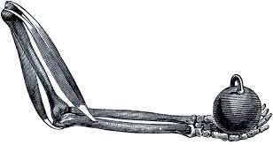 Halloween Skeleton Halloween Skeleton Arm The Graphics Fairy