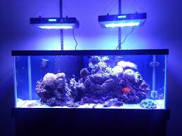 led aquarium light with timer new165w dimmable led aquarium light l with timer dimmer moonlight