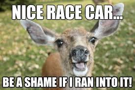 Oh Deer Meme - yes deer meme deer best of the funny meme