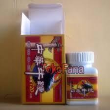 jual obat kuat qiang jin wei hammerofthorasli space 25 best