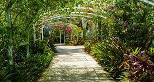 Naples Florida Botanical Garden Trianon Hotels Places You Need To Go On Your Naples Florida