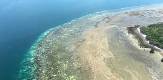 Great Barrier Reef Map Bad News Keeps Coming For The Great Barrier Reef Karryon