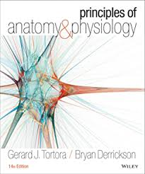 Answer Key For Anatomy And Physiology Lab Manual Update Anatomy U0026 Physiology Laboratory Manual 008 Robert