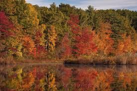england fall colors beate dalbec u0027s blog