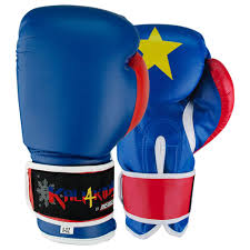kali 4 kids boxing gloves revgear