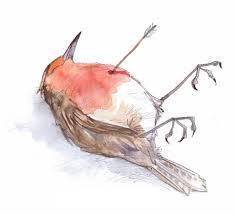 who killed robin gwen burns