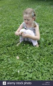 young looking for four leaf clover in an area of ground