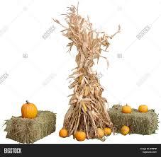 Fall Decorations Image &