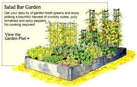Best Garden Layout Garden Vegetables Amazing Best Vegetable Garden Layout Best