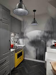 Home Design Remodeling by Fabulous Designs For Chicago Kitchen Remodeling Designforlife U0027s