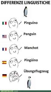 Different Languages Meme - 7 best around the world languages images on pinterest funny