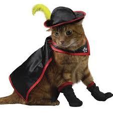 pet costumes pet cat costumes dog costumes pet costumes