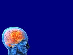 neurology powerpoint template 2 free medical powerpoint