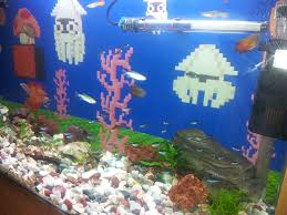 45 best fish images on fishing fish tanks and mario