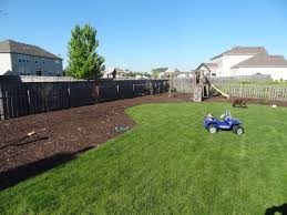 landscaping ideas for backyard privacy cont northeast corner of