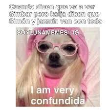 Memes De Chihuahua - 938 best luna images on pinterest disney channel funny memes