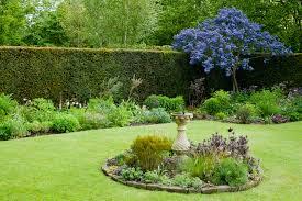 magical gardening