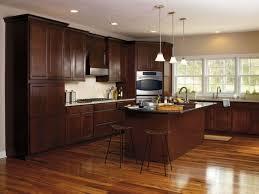 dark cabinet kitchen ideas kitchen dark cabinet kitchens luxury kitchen stone backsplash ideas