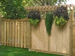 Fence Ideas For Backyard by Best 25 Backyard Privacy Ideas Only On Pinterest Patio Privacy