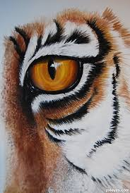 drawing guide the of the eye of the tiger pxleyes com