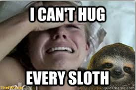 Sloth Jokes Meme - sloth meme i can t hug every sloth picture golfian com
