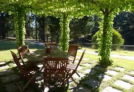 Pictures Of Pergolas In Gardens by 19 Best Pergola Plants Climbing Plants For Pergolas And Arbors
