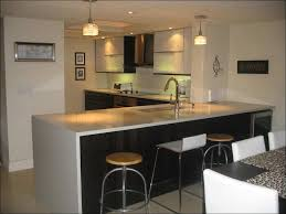 Kitchen Cabinets Consumer Reviews by Kitchen Ikea Stainless Steel Kitchen Ikea Garbage Can Ikea